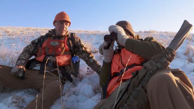 MeatEater Season 7: Steve and Remi Hunt Late Season Montana Bulls
