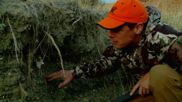 Steven Rinella on the Pronghorn Antelope
