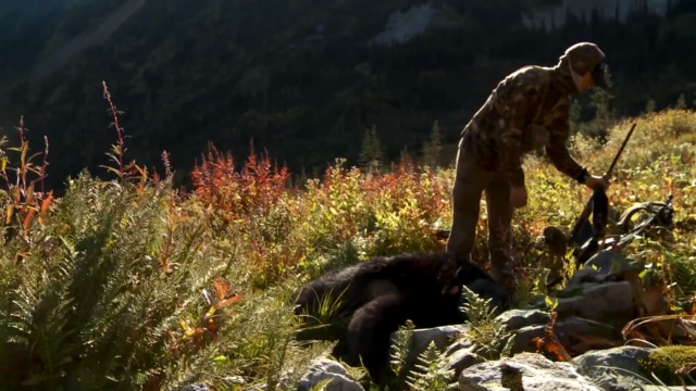 How to Skin and Butcher a Black Bear with Steven Rinella