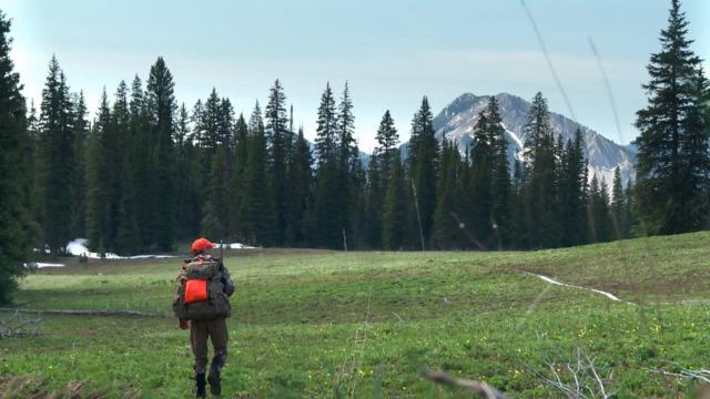 S6-E15: Mountain Memories: Montana Black Bear