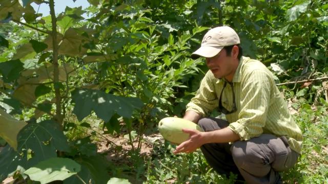 Steven Rinella Tastes Bolivian Watermelon