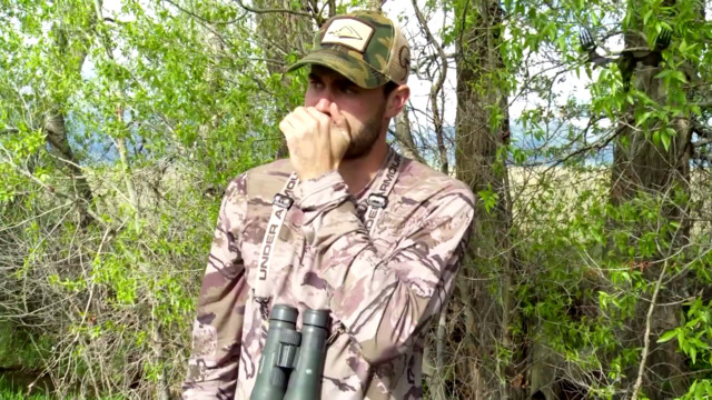 How to Call an Elk: Basic Mew Call With Remi Warren