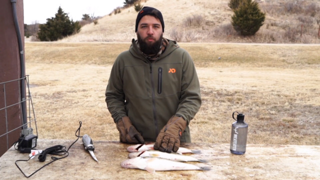 Does Bleeding Walleye Work?
