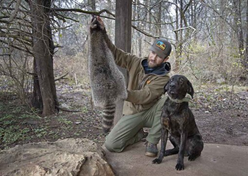 How to Skin a Raccoon with Clay Newcomb