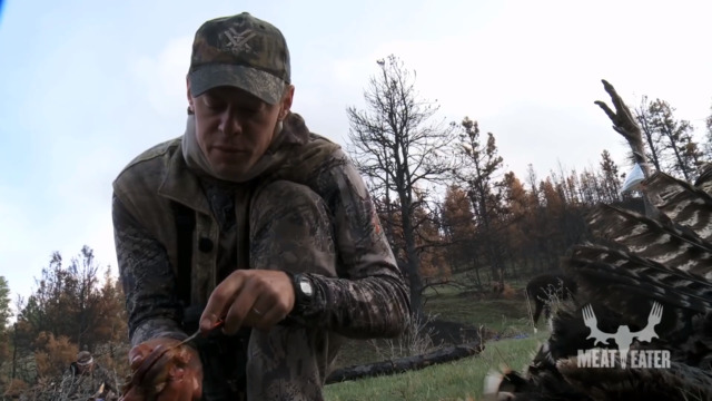 Wild Turkey Edible Organs with Steven Rinella MeatEater