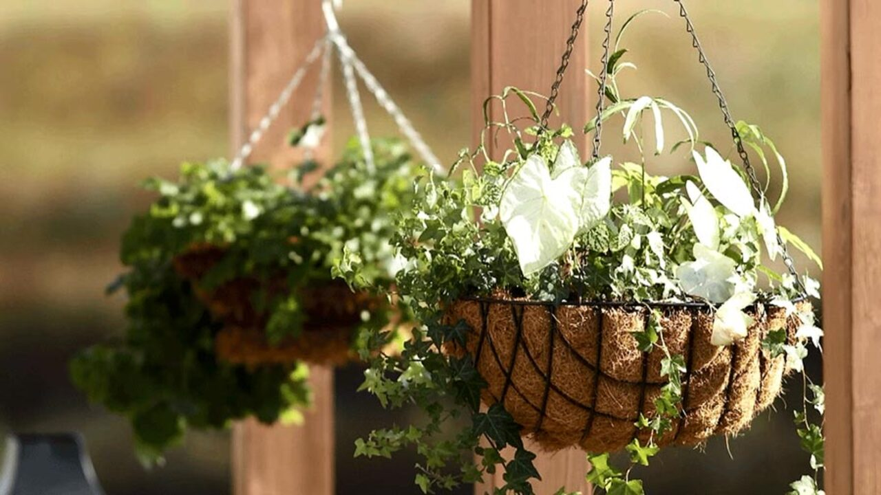 10-Minute Outdoor Decor
