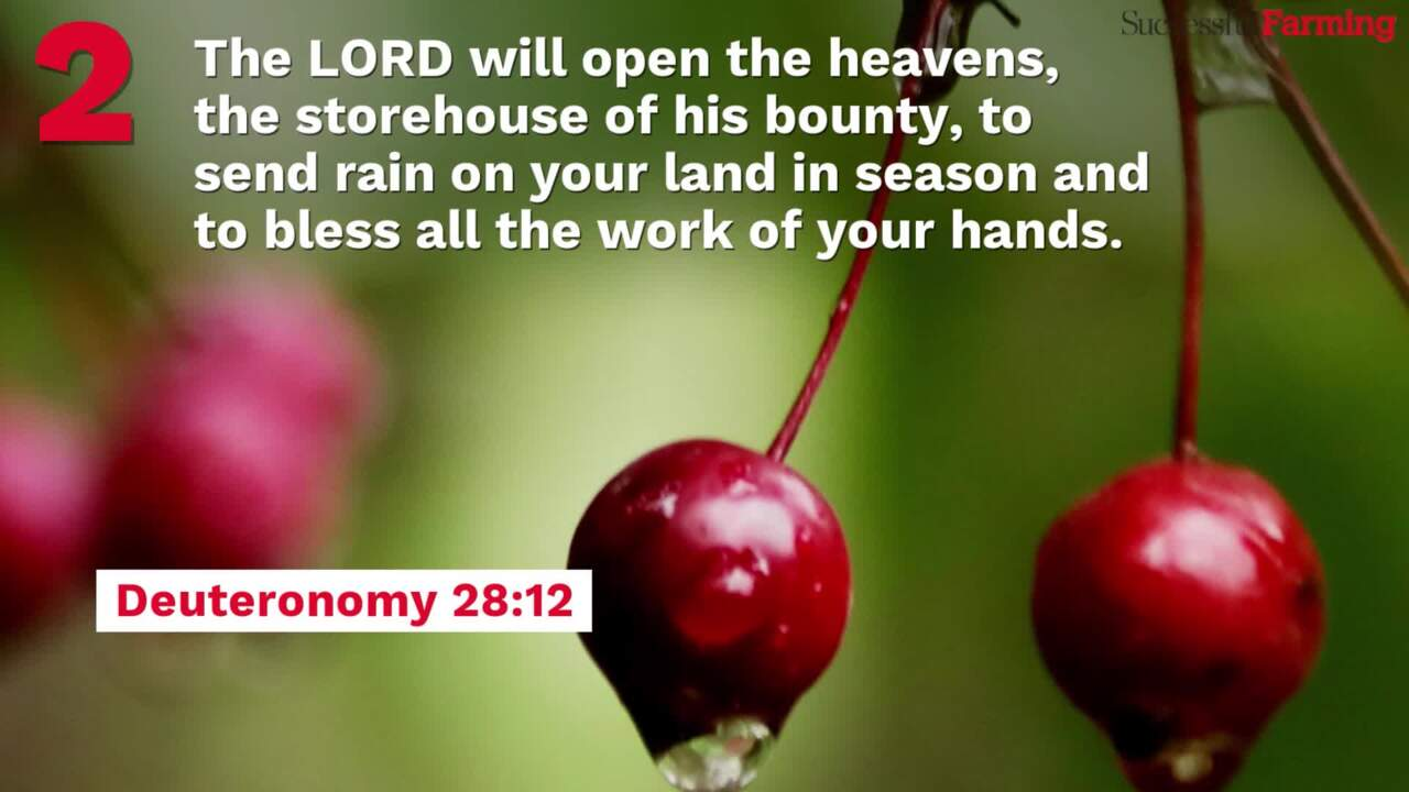 26 Bible Verses for Farmers | Successful Farming