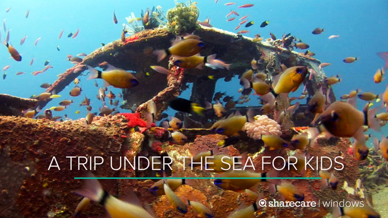 A Trip Under the Sea for Kids