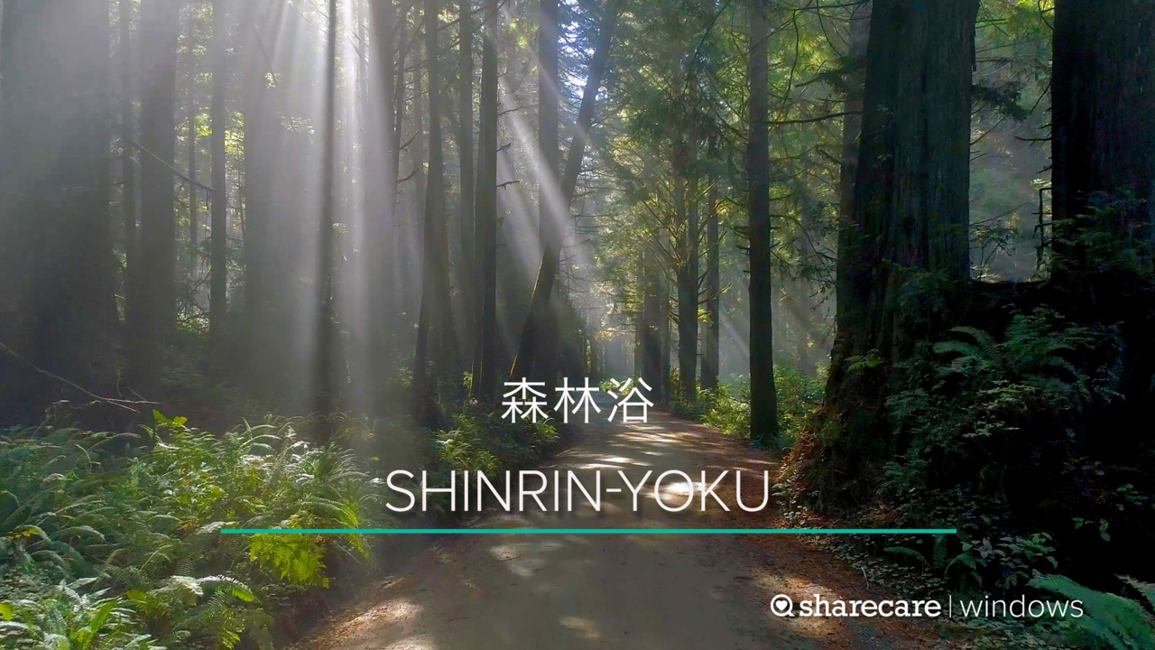 One Hour of Shinrin-Yoku (Forest Bathing)