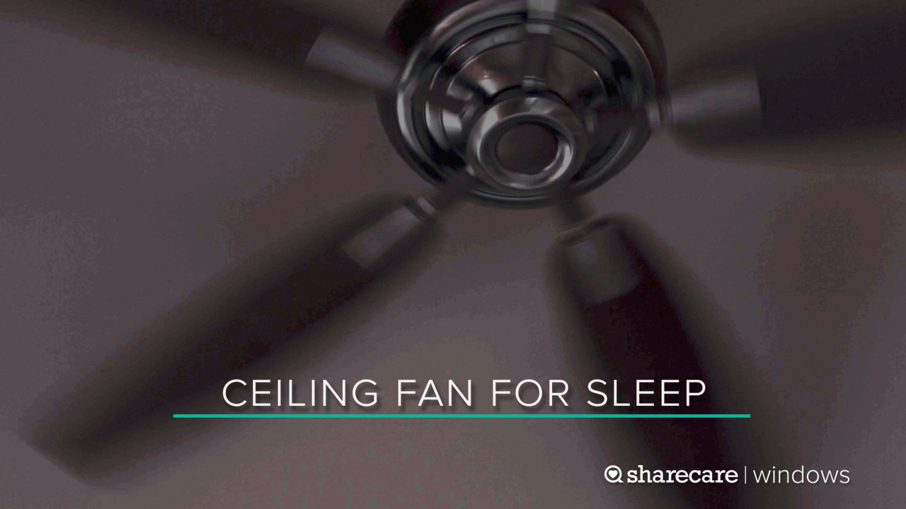 9 Hours of Ceiling Fan for Sleep (Ultra Low Light)