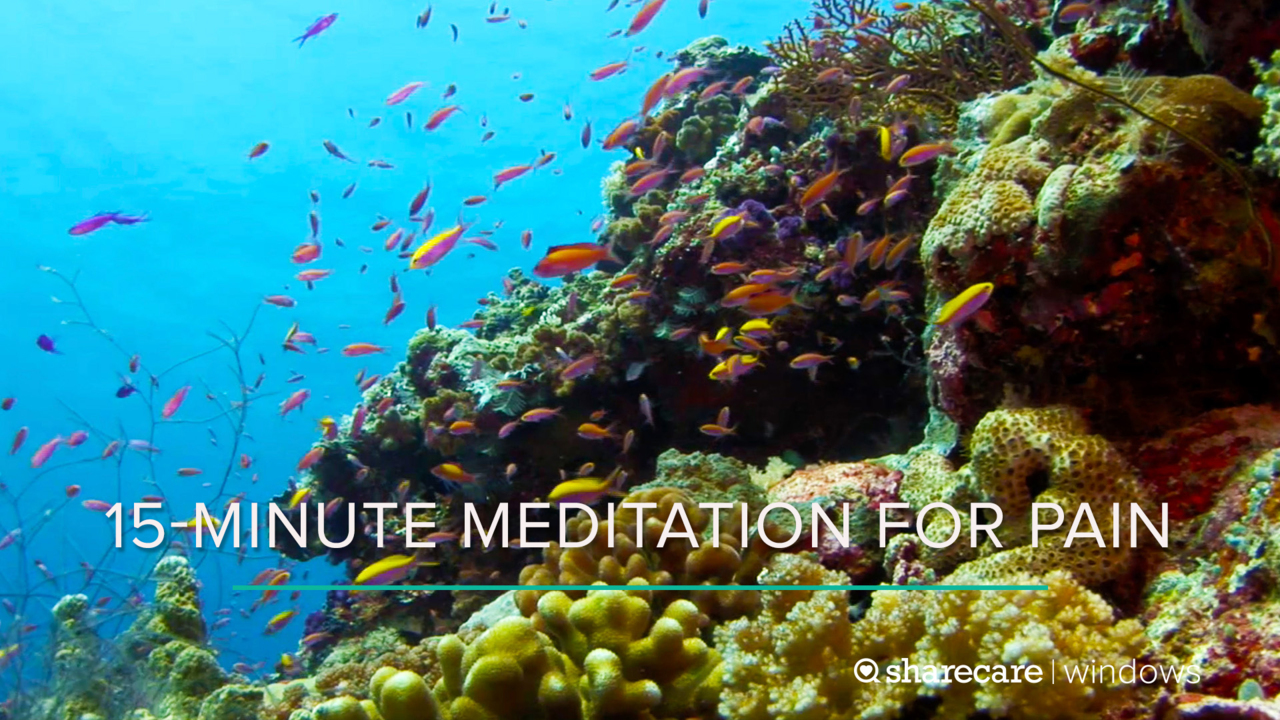 15-Minute Meditation for Pain