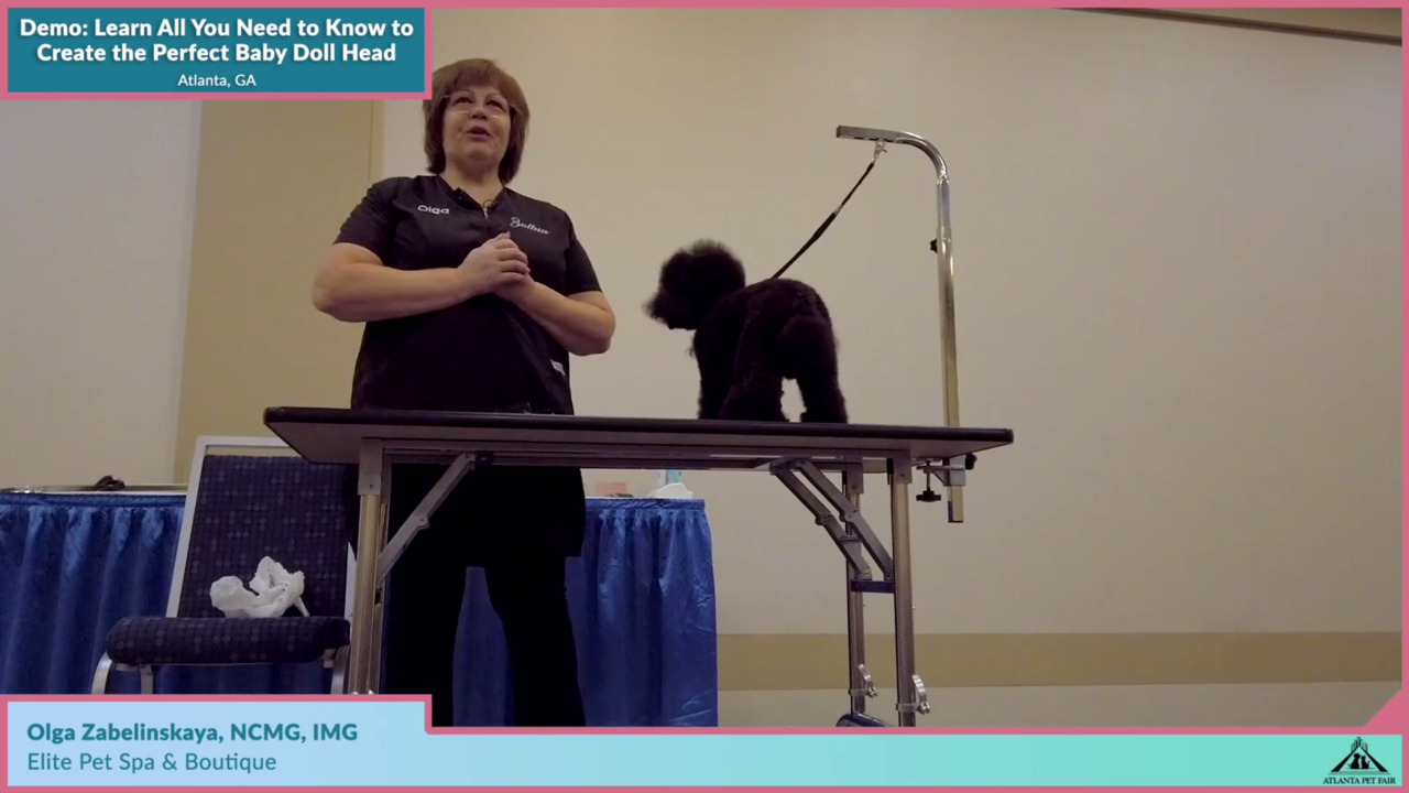 Thumbnail for Atlanta Pet Fair: Learn All You Need to Know to Create the Perfect Baby Doll Head