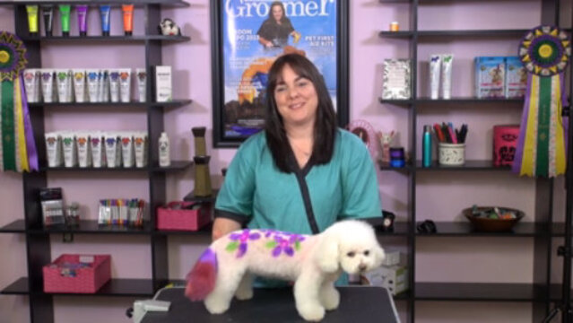 Thumbnail for Color Time Management in a Busy Salon
