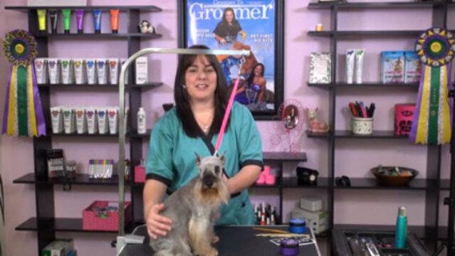 Thumbnail for Short Creative Bits – Shimmer Gel, Hair Crayons & Eyelashes (Part 1 of 3-Part Series: Shimmer Gels)