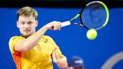 Hot Shot: Goffin Floats Like A Butterfly, Stings Like A Bee