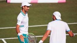 Hot Shot: Djokovic Applauds Gomez-Herrera's Perfect Tweener In Mallorca Doubles!