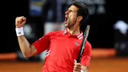 Highlights: Djokovic, Nadal Last Men Standing