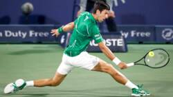 Hot Shot: Djokovic's Devastating Dropper In Dubai Freezes Tsitsipas