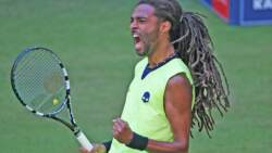 Los Increíbles Hot Shots De Dustin Brown En Halle