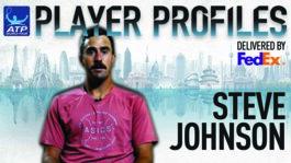 Johnson FedEx ATP Player Profile 2017