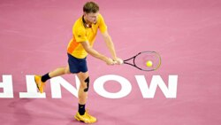 Hot Shot: Goffin Flicks 'Extraordinary' Winner In Montpellier