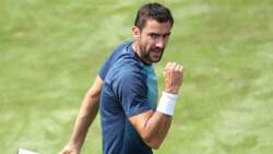 Hot Shot: Cilic Curls Forehand Winner From The Parking Lot