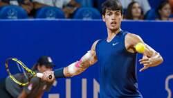 Highlights: Alcaraz Beats Krajinovic To Reach Umag SFs