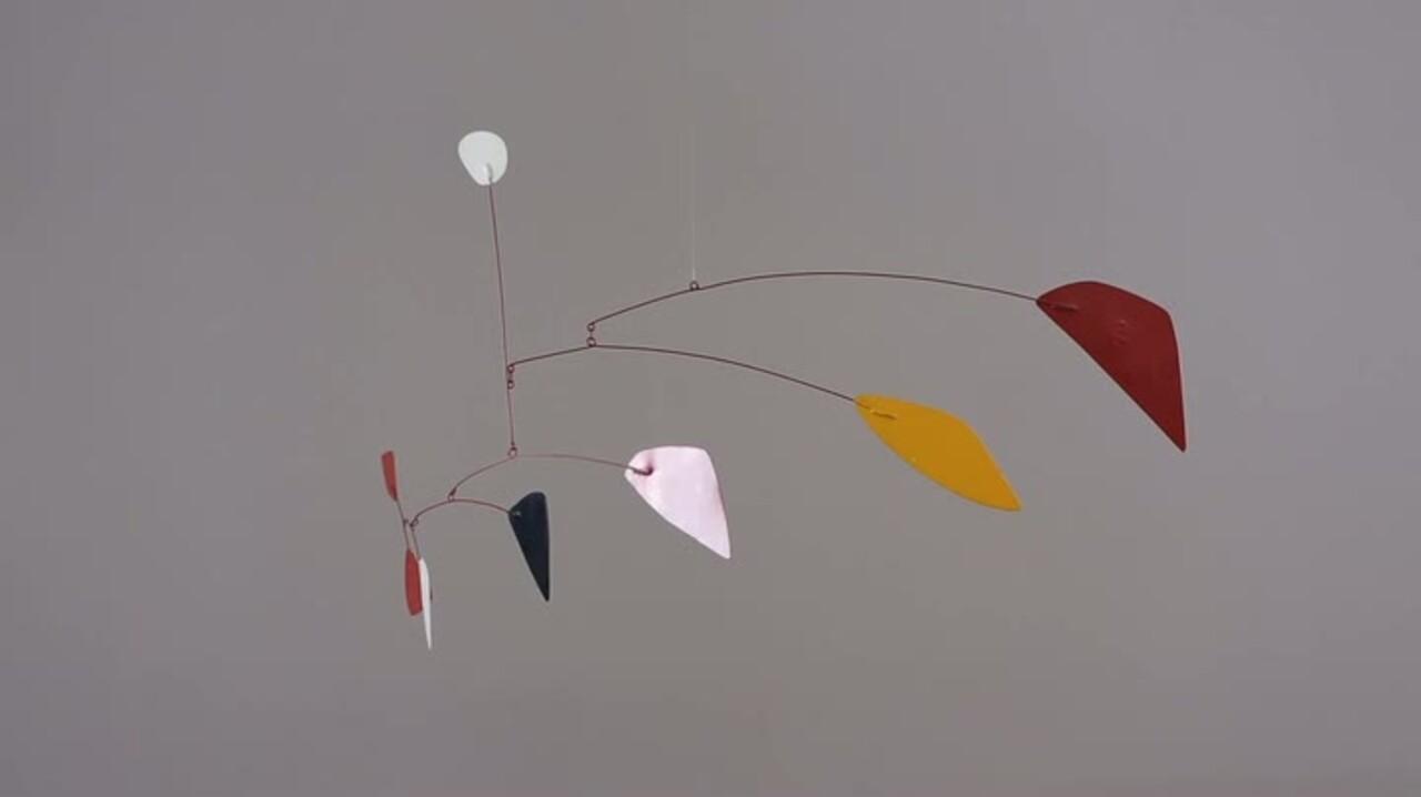 360 View: Alexander Calder's W