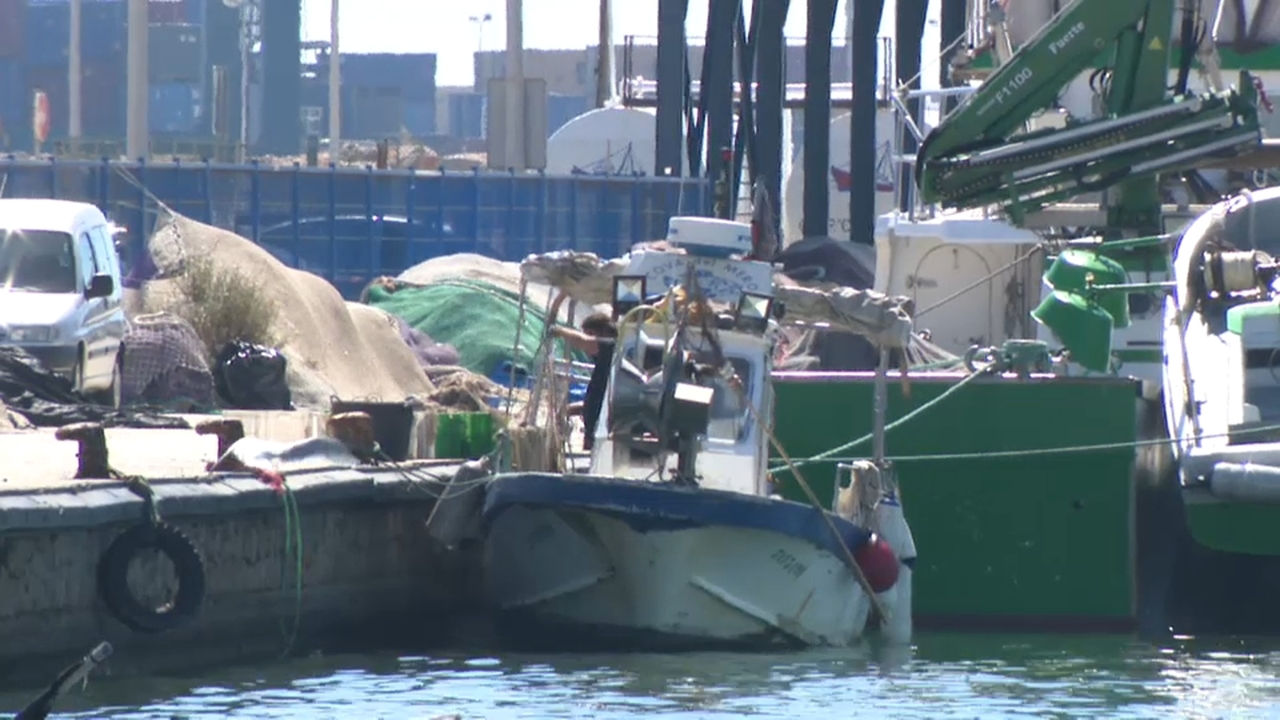 Port pesquer de Castelló