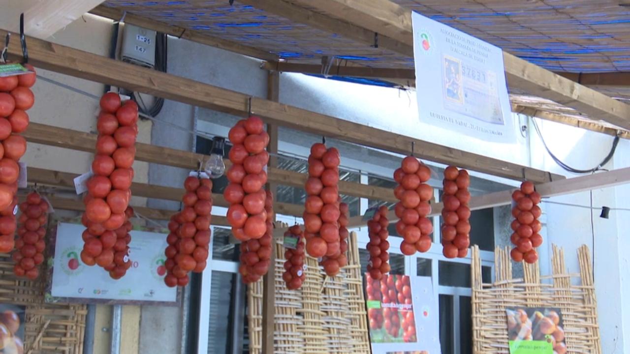 Parades, demostracions gastronòmiques i menús al voltant de la tomata de penjar, producte estrela de la comarca