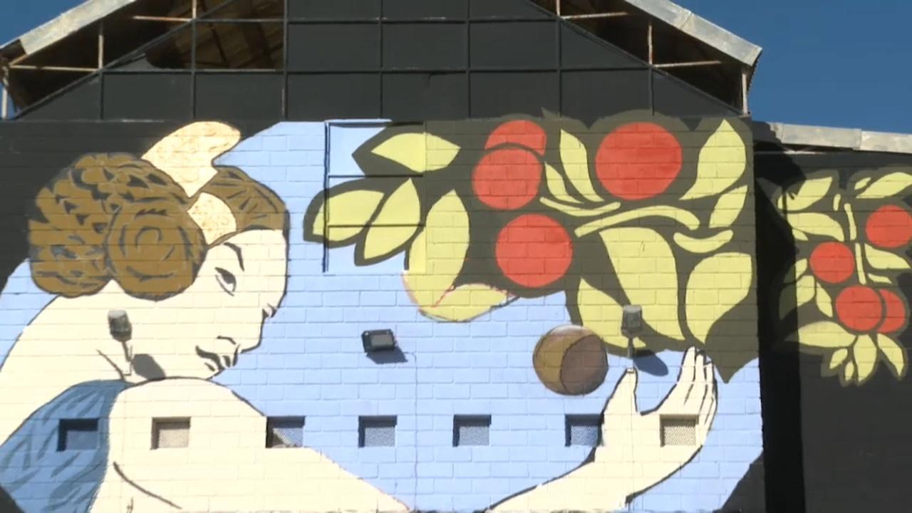 El seu mural, al trinquet municipal de Sagunt, forma part del V Festival d'art urbà Més que murs