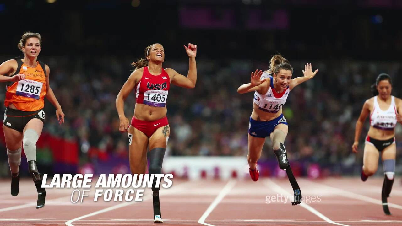 Paralympic Sports Revealed The Shib Sibs: Track and Field