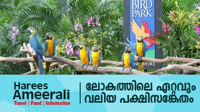 Largest bird park in the world | Harees Ameerali