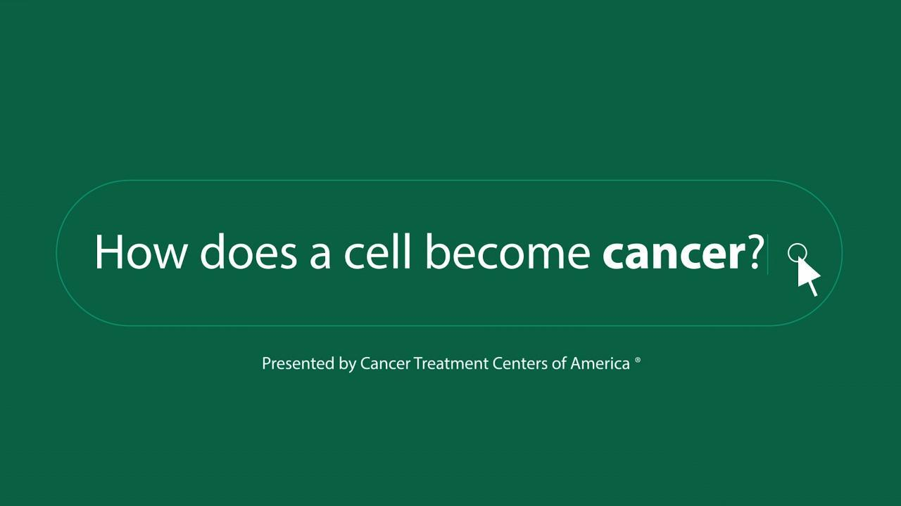 What are the common categories of cancer?