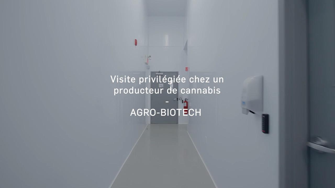 March Du Cannabis