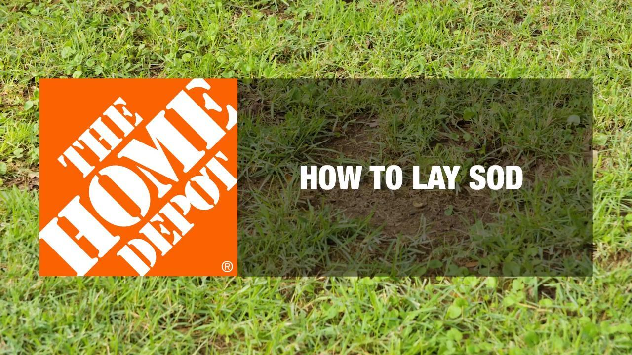 How To Lay Sod Lawn And Garden How To Videos And Tips At The Home Depot