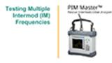 PIM Master Multi IM Testing