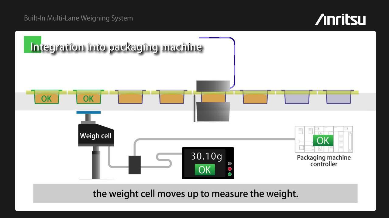 Built-In Multi-Lane Weighing System