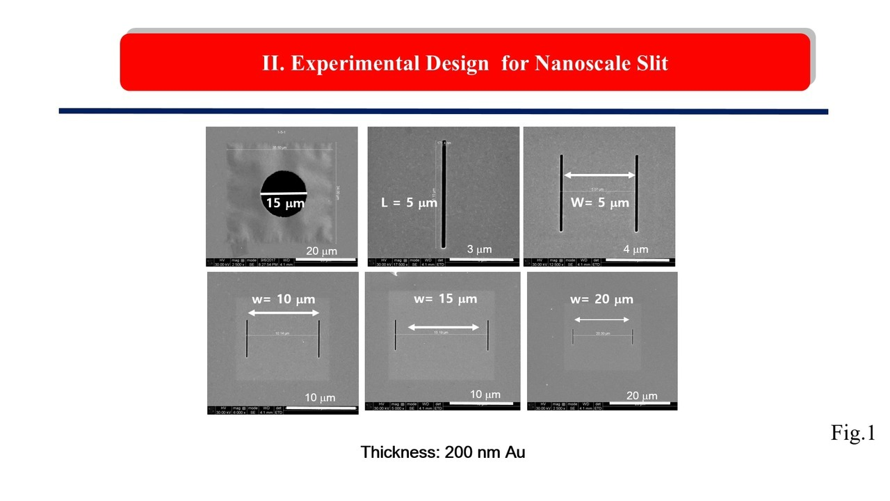 Fabrication Of Plasmonic Nano Aperture Array With Nanoscale Double Slits For Single Molecule Analysis