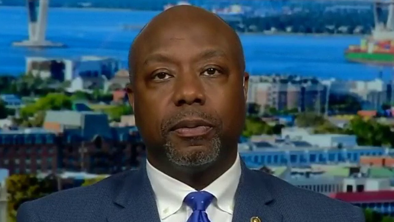Sen. Tim Scott says Joe Biden's record on African-American issues has been questioned by his own party