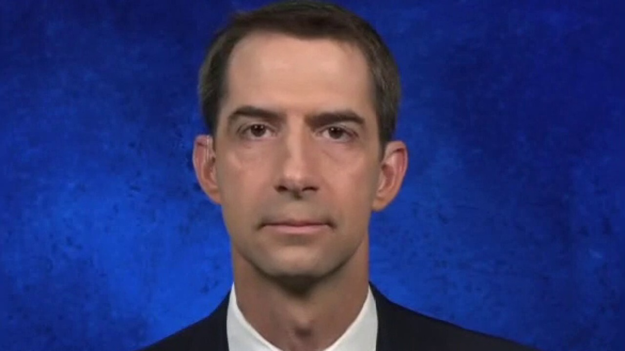 Sen. Tom Cotton reacts to Biden's economic plan: 'Talk is cheap, look at his record'