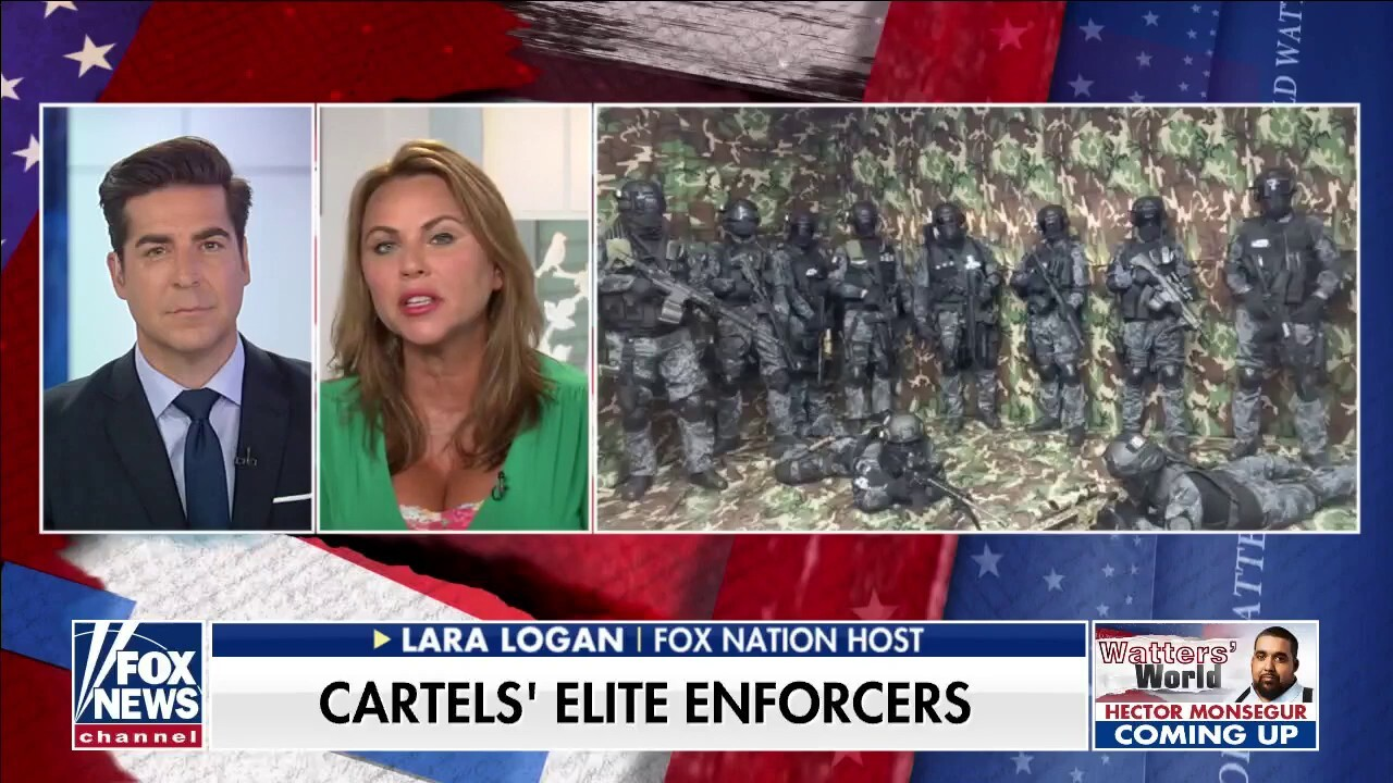 Lara Logan raises concern over Mexican cartel specializing in 'targeted assassinations and kidnappings'