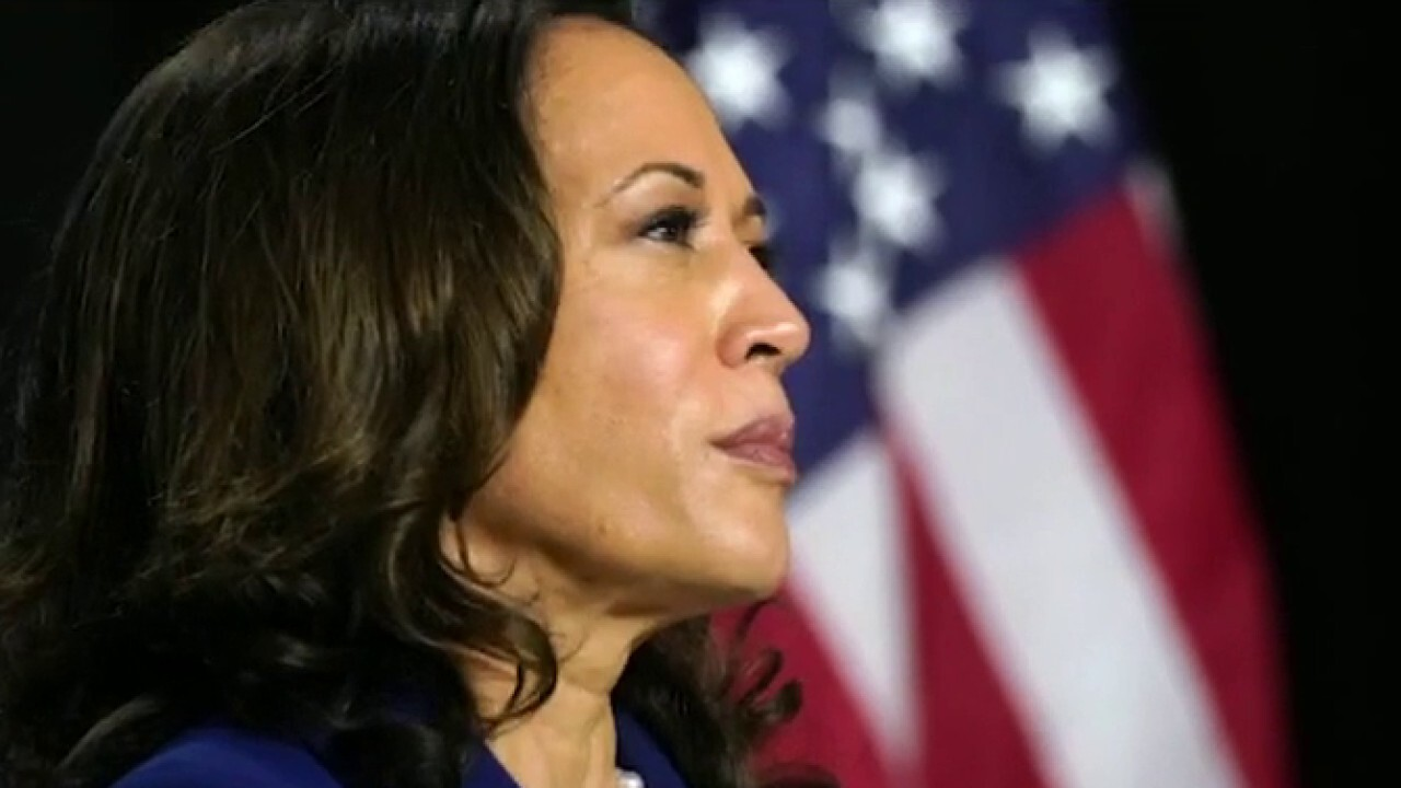 Criticize Kamala? Tammy Bruce says Dems are creating a 'virtual bunker' for the VP pick