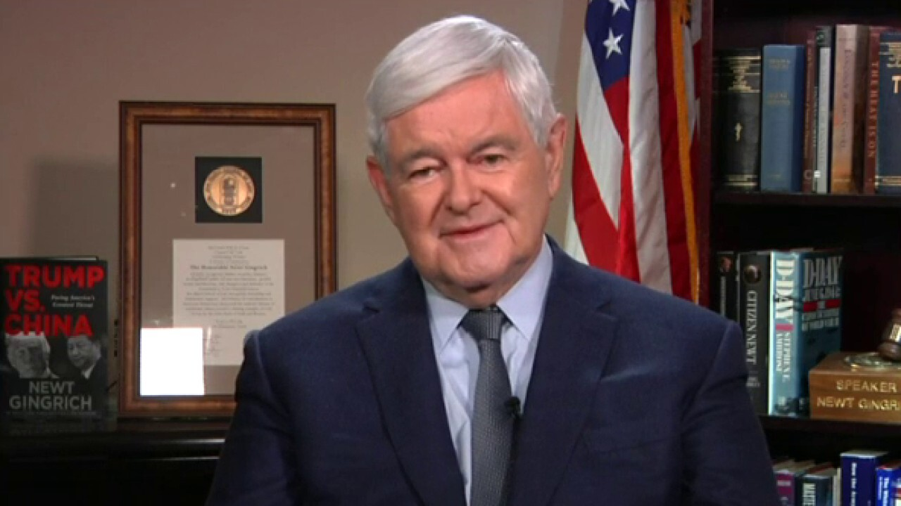 Gingrich talks Trump's India visit, growing radical wing of the Democrat Party