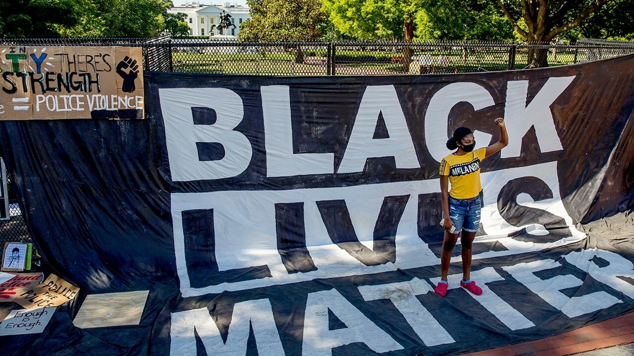 Black Lives Matter teachings in school is 'cause for deep alarm': Expert