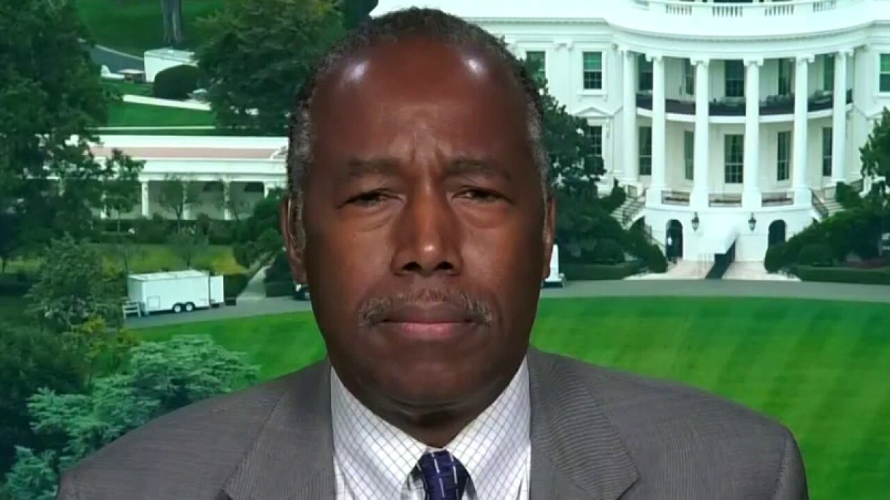 Secretary Ben Carson says violence in America is creating more concrete divisions