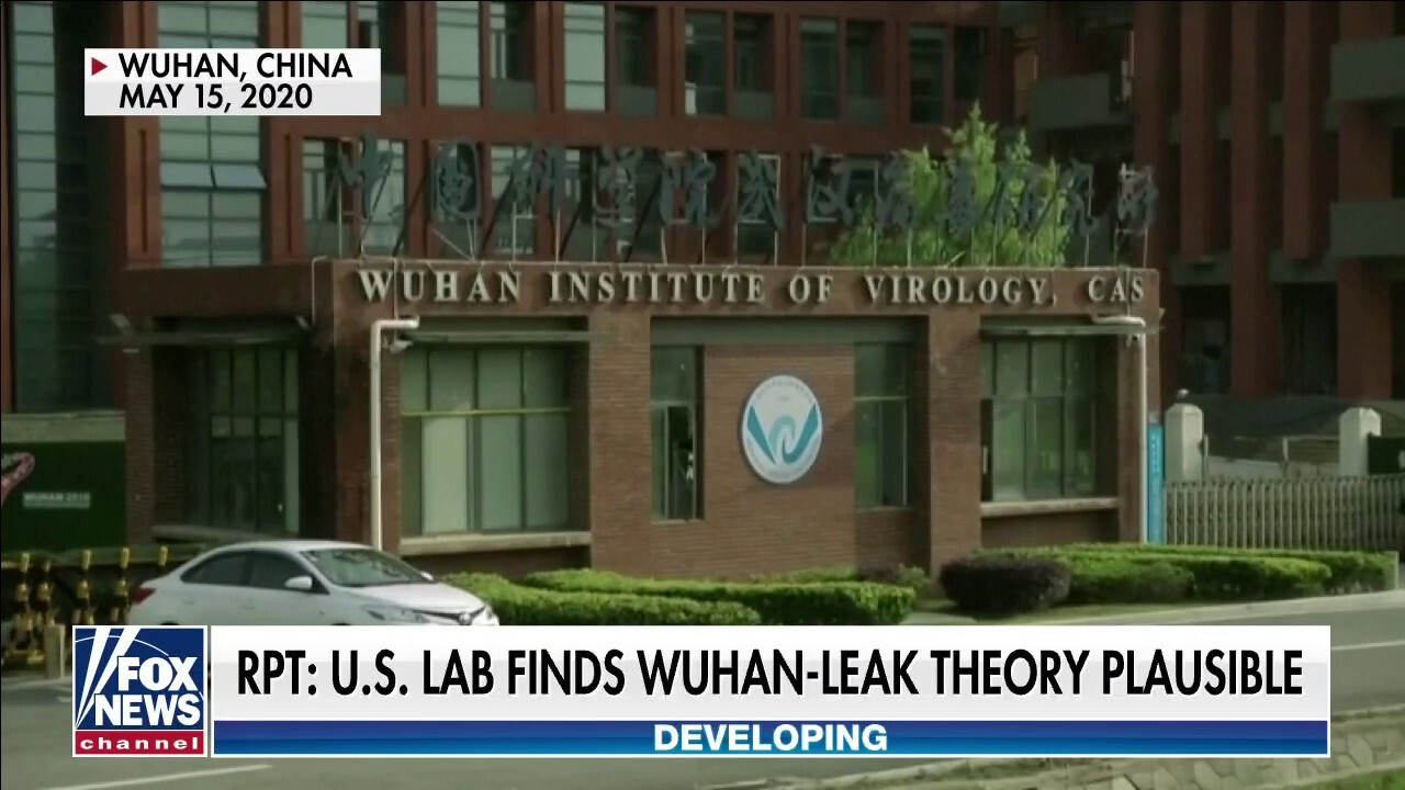 Newly resurfaced report from U.S. scientists says Wuhan lab leak theory is 'plausible'