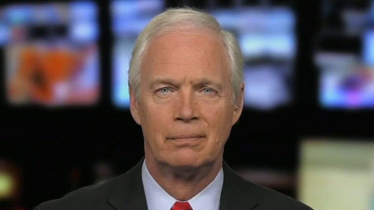 Ron Johnson: Biden admin completely dismantled working border policy