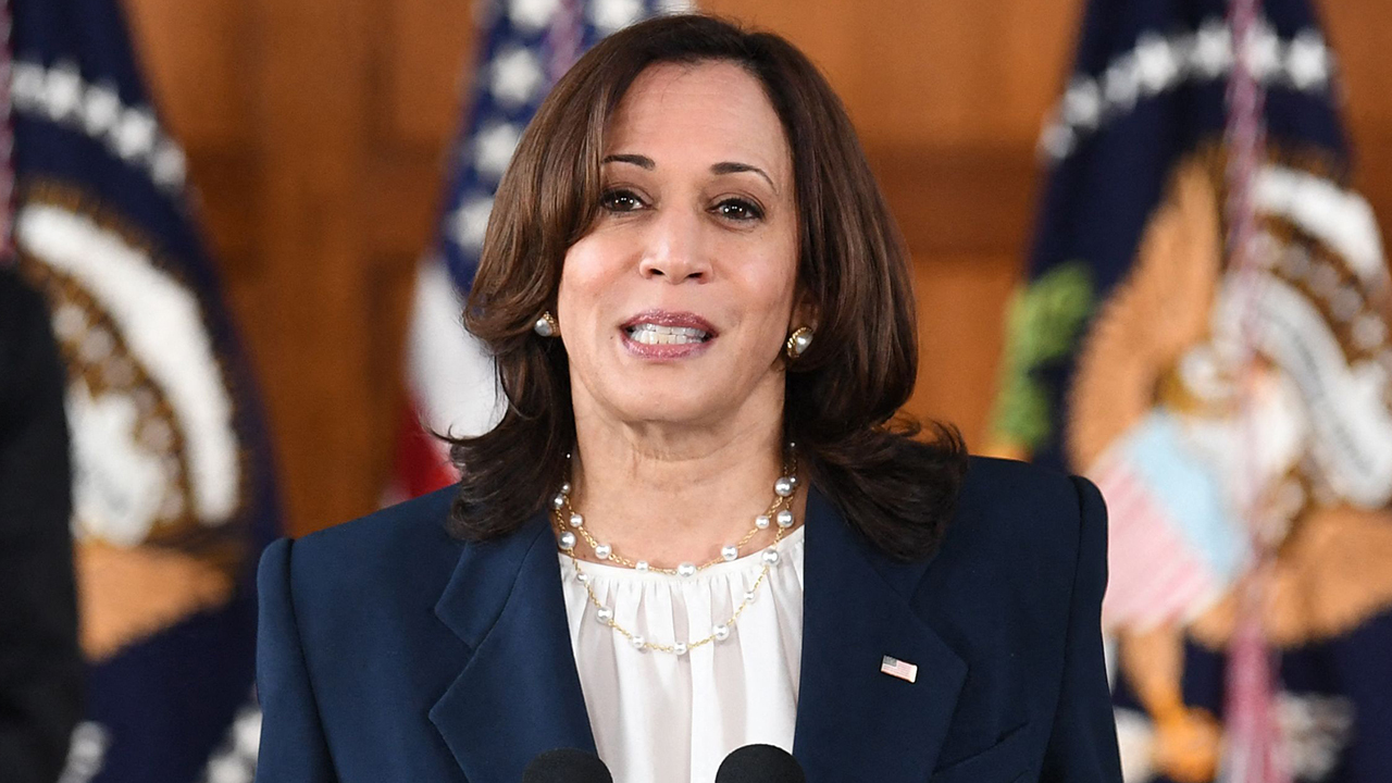 Eric Shawn: Can Vice President Harris help stop the migrant flow?