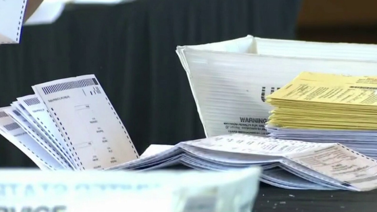 Dominion server crash delays recount in Georgia's Fulton County: report
